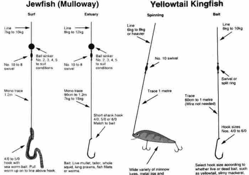 Kob salmon and yellowtail rigs fishing knots and rigs for Salmon fishing rigs