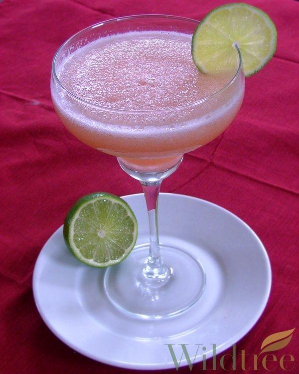 Frozen Watermelon Lime Margarita | Deliciousiness | Pinterest