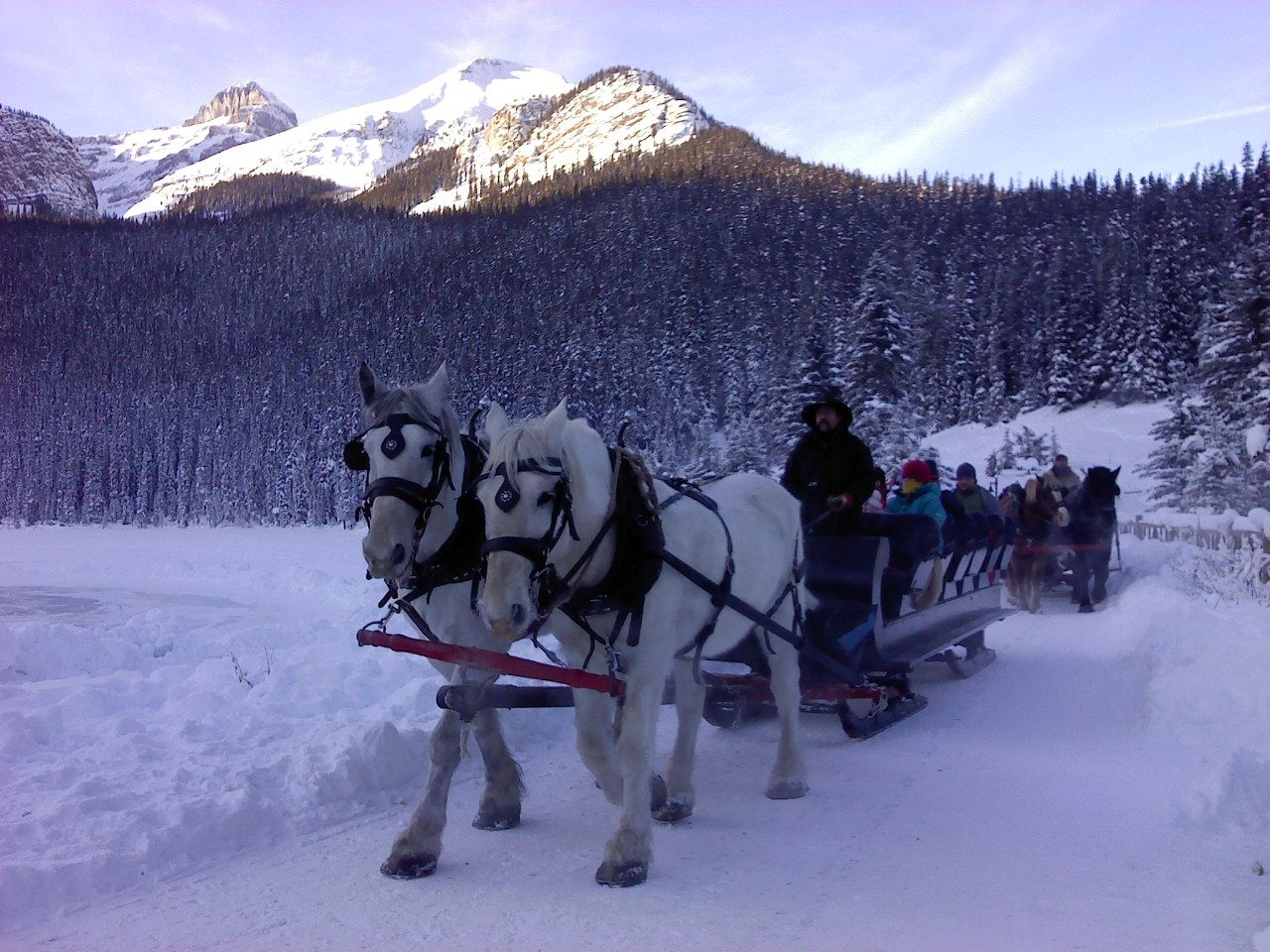pin snow ride carriage -#main