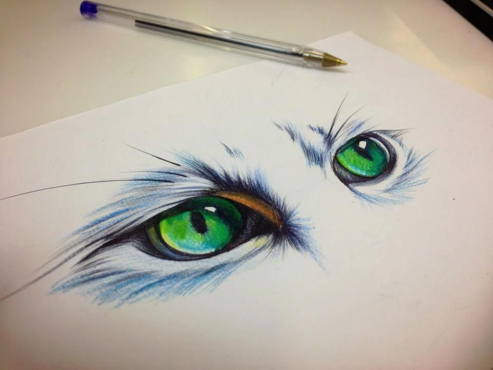 pin cat eyes tattoo print tattoos designs on pinterest. Black Bedroom Furniture Sets. Home Design Ideas