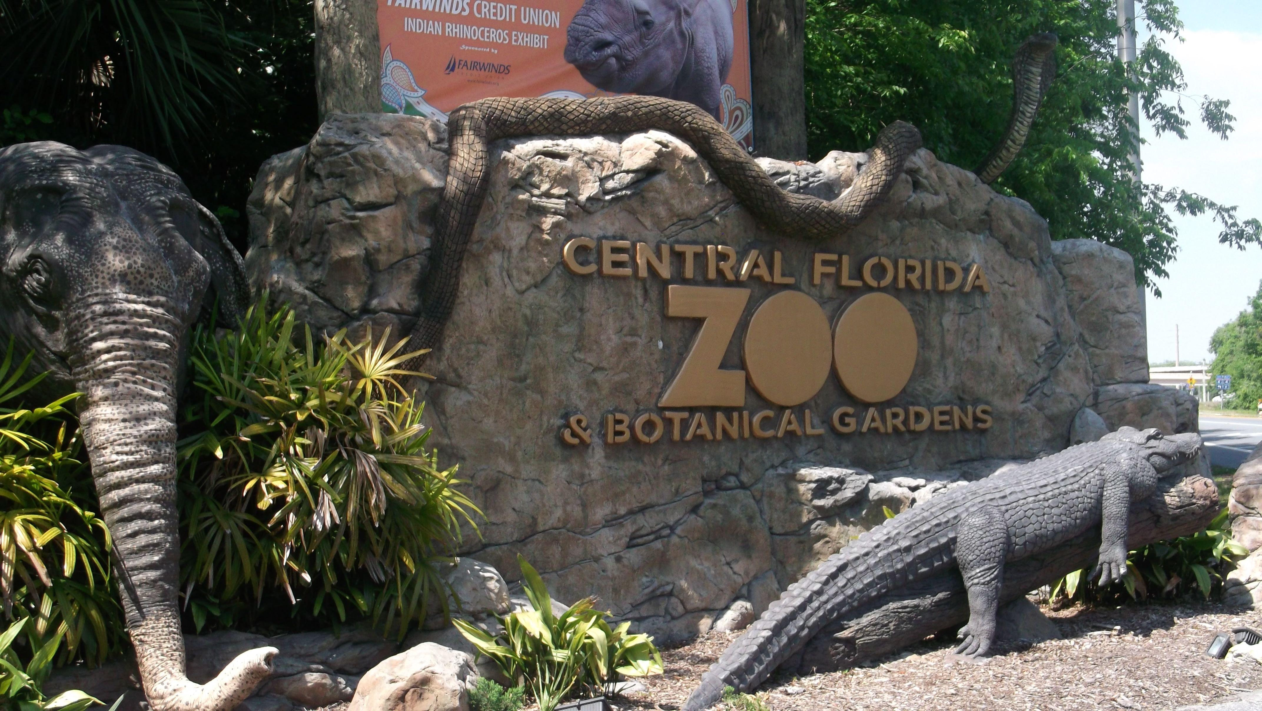 Florida Zoo Related Keywords Florida Zoo Long Tail Keywords Keywordsking