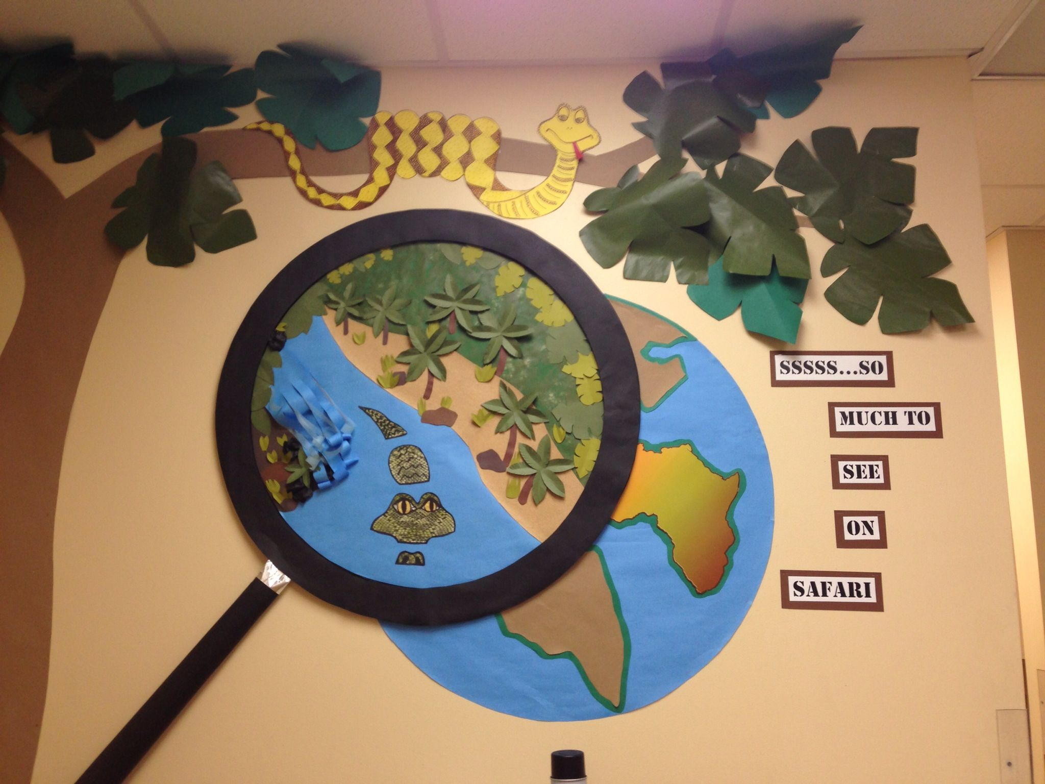 Classroom Ideas Science : Safari themed science classroom the life of a childrens