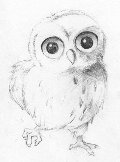 Owl Sketch ART o Pinterest