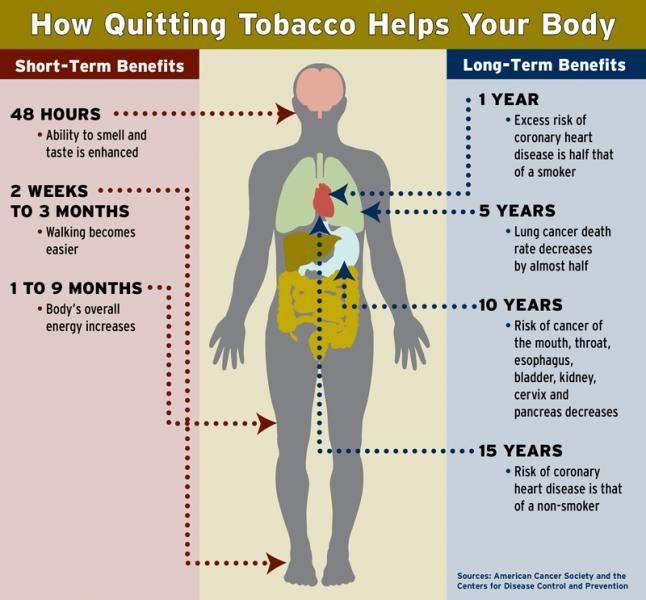 benefits of the non smoker The benefits are just beginning between two weeks and three months of quitting smoking major physical improvements are occurring that should encourage any new ex-smoker that you are on the right track.