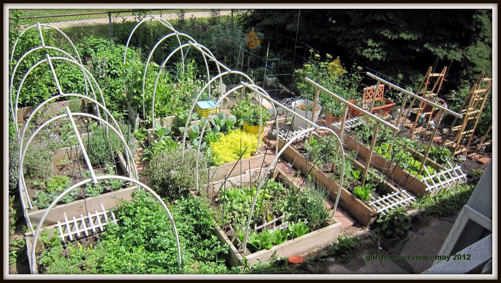 Vegetable patch gardens pinterest for Vegetable patch