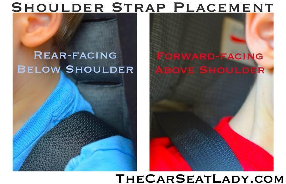 Shoulder Strap Placement Car Seat Safety Pinterest