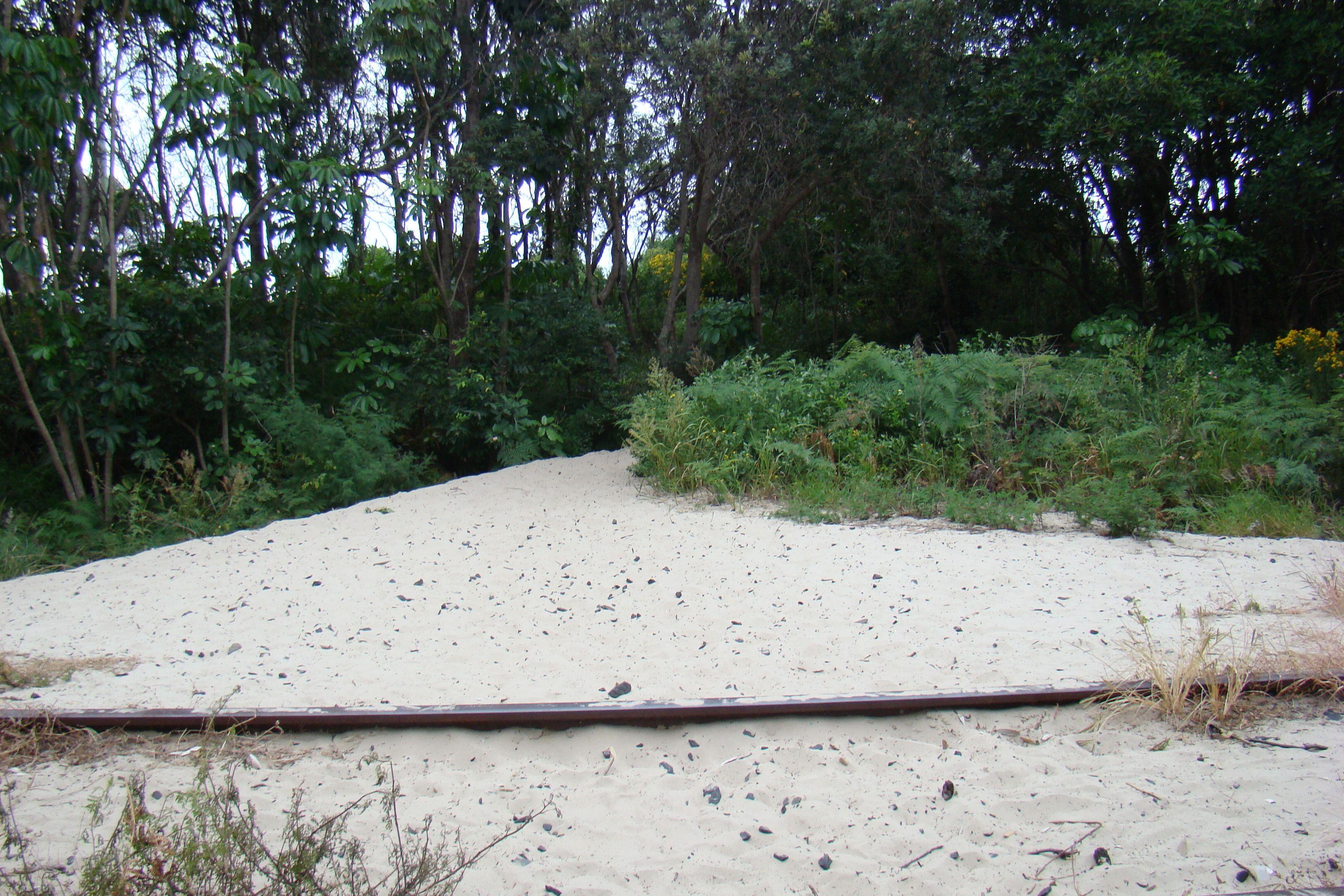 Backpackers Inn (Byron Bay // Australien): Direkter Zugang zum Strand
