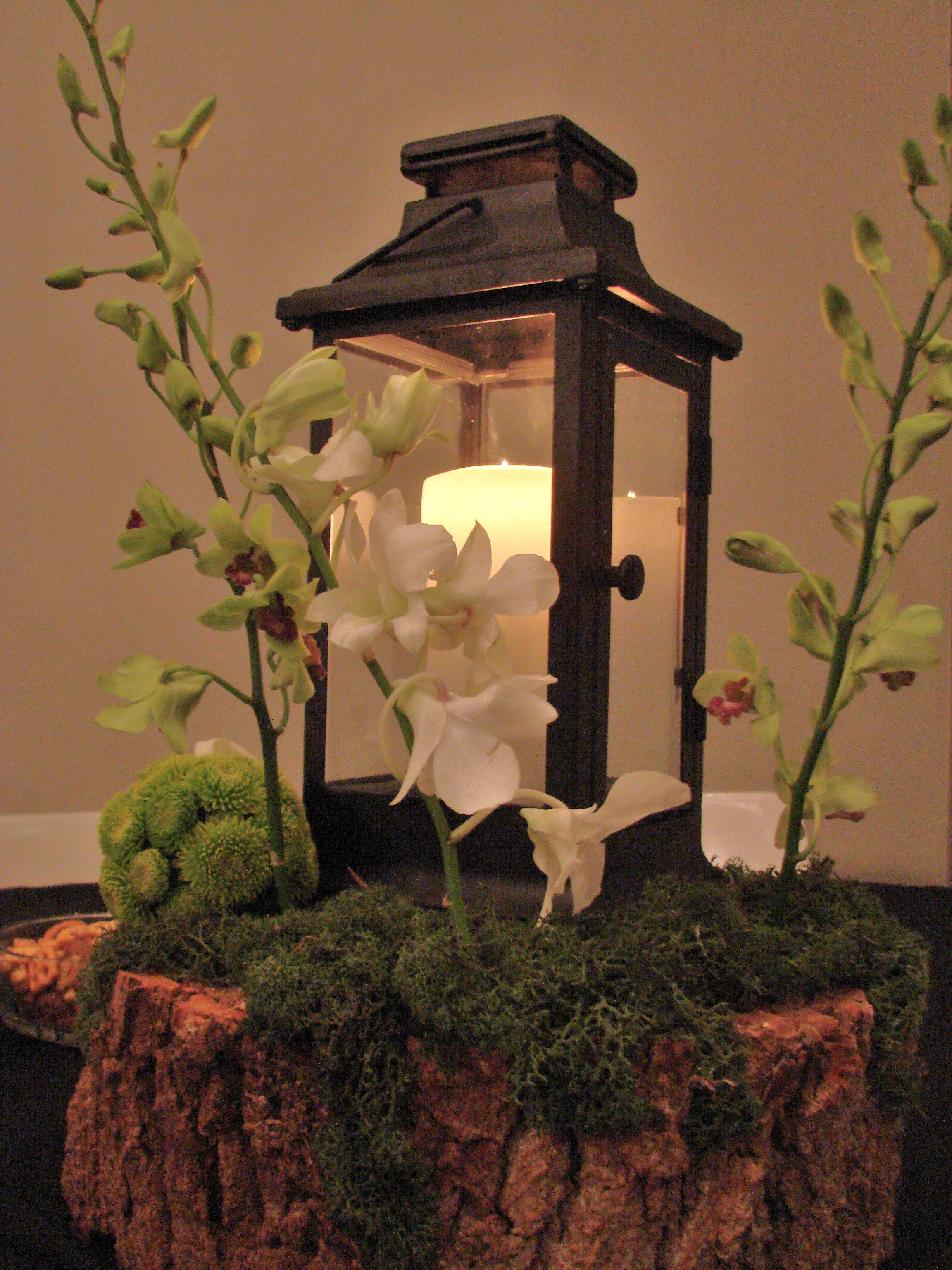 Enchanted forest centerpiece wedding ideas pinterest for 101 forest wedding decoration