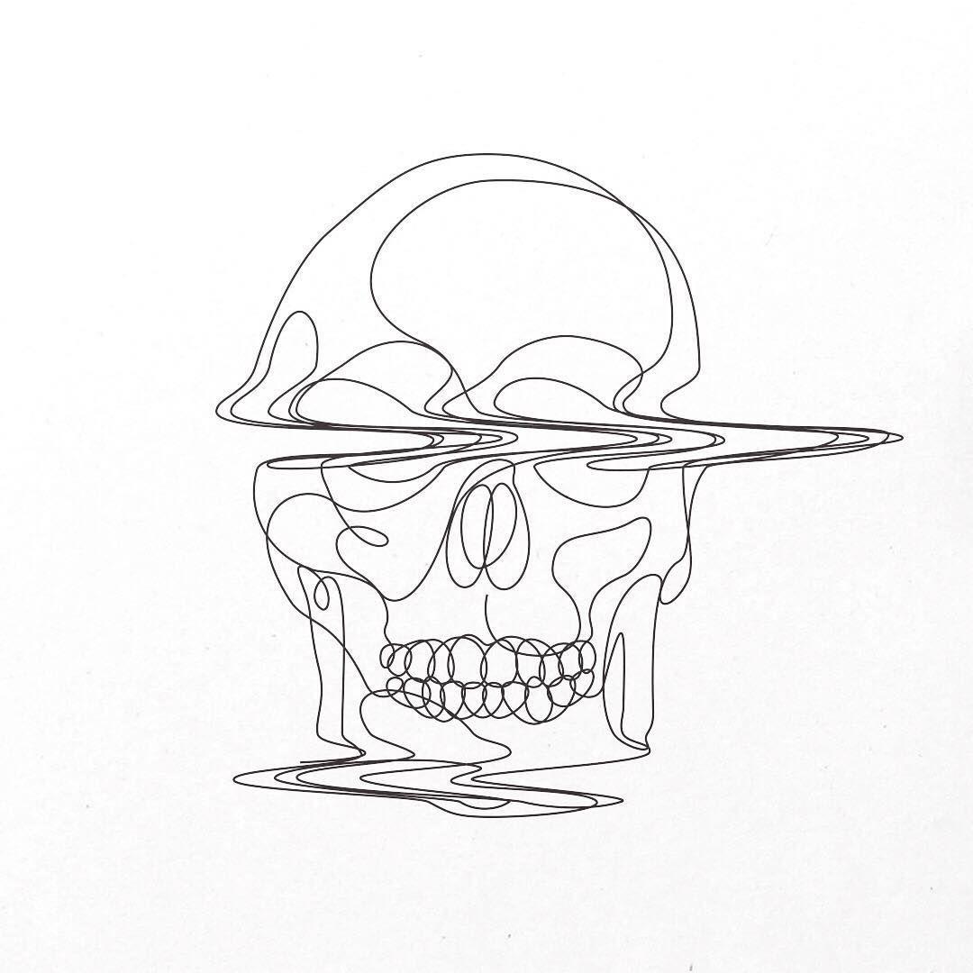 Narwhal skull