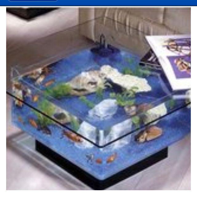 Fish tank coffee table furniture pinterest for Fish tank furniture