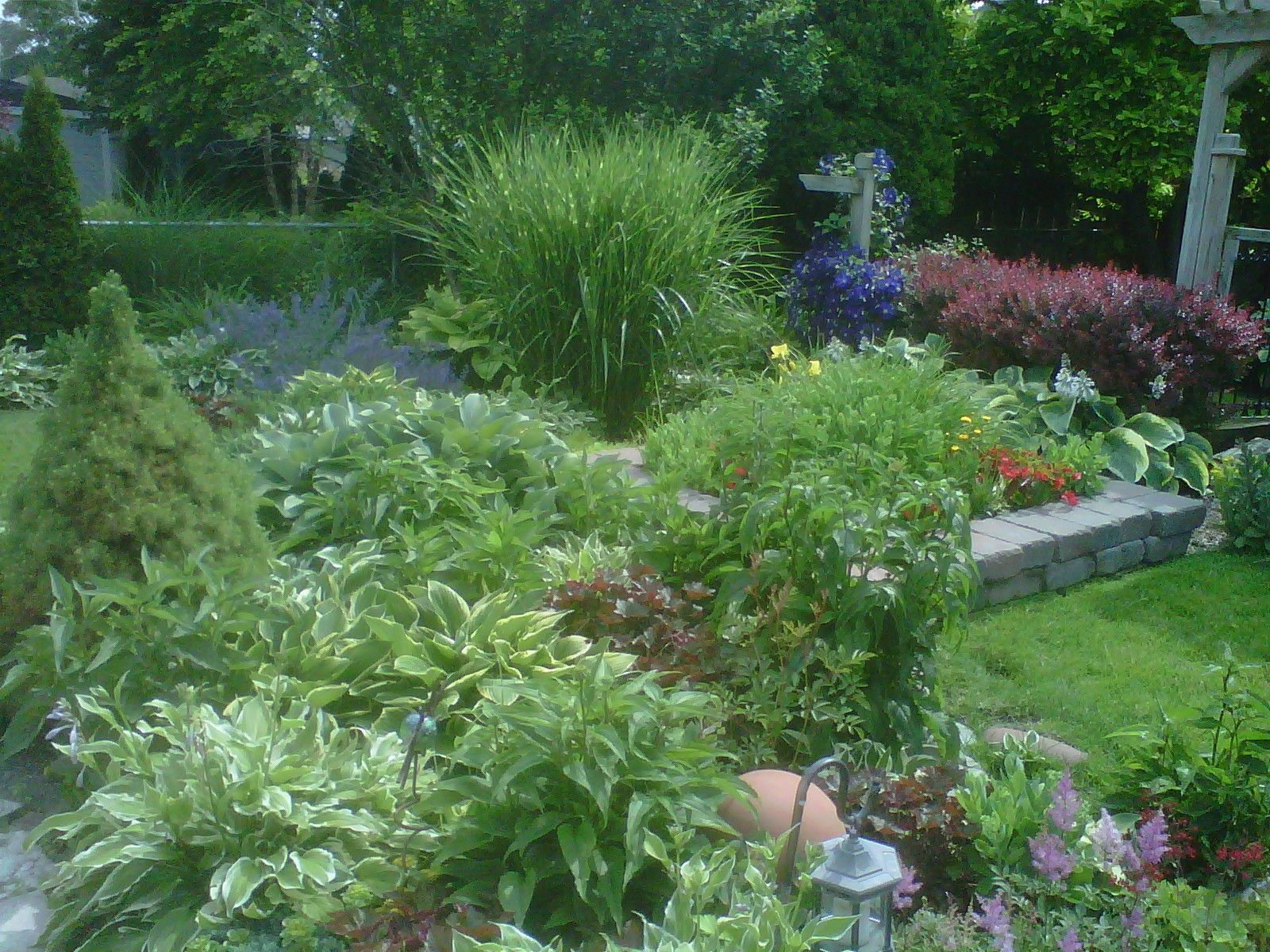 Shade garden easy care gardens pinterest for Easy upkeep landscaping