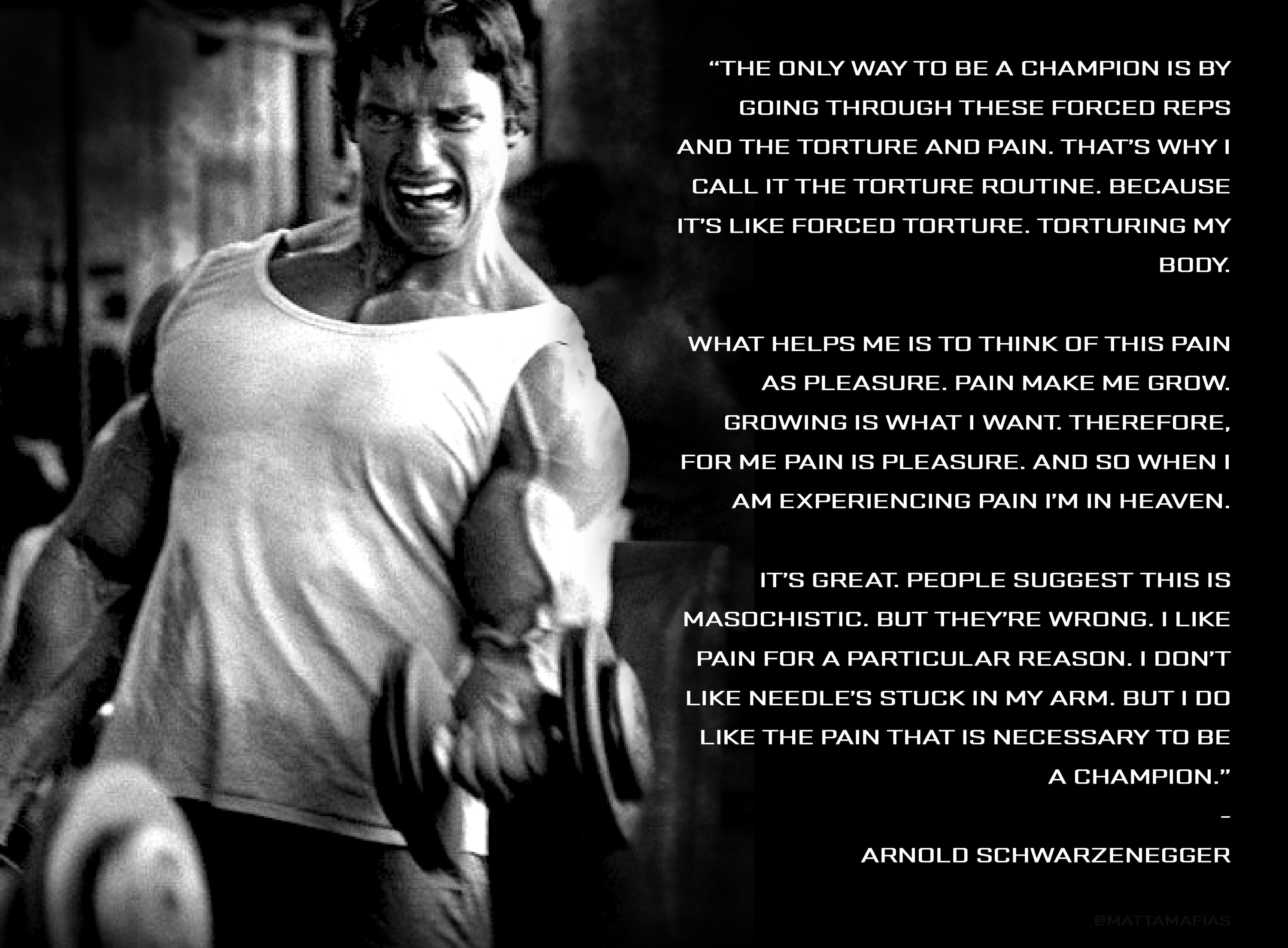 Arnold Gym Pain Quotes. QuotesGram