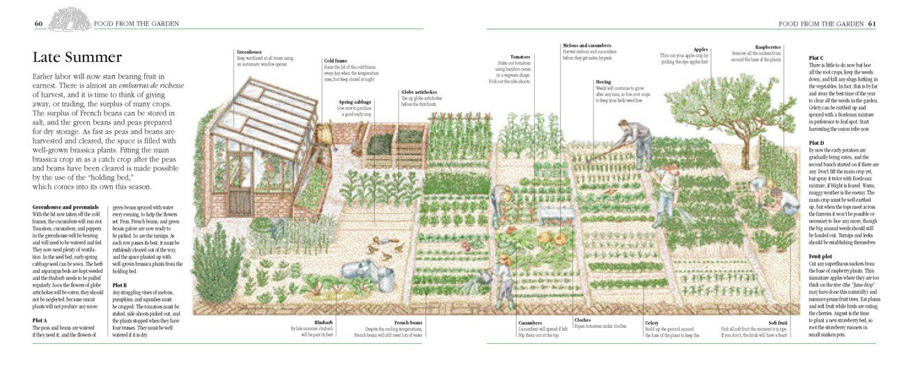 Self Sufficient Backyard Farm Various
