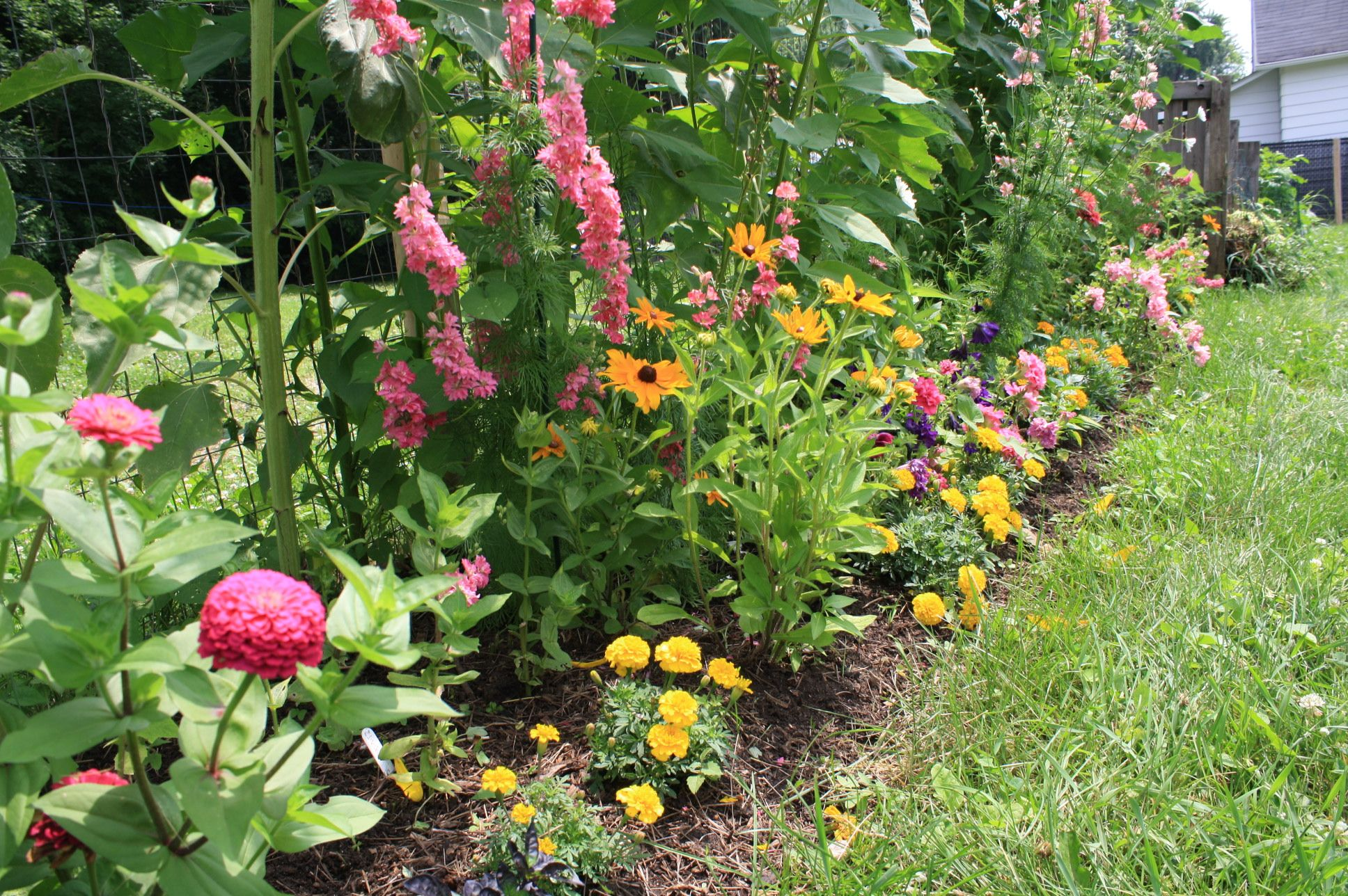 Rear flower border our recent vegetable gardens pinterest Flowers to plant in vegetable garden