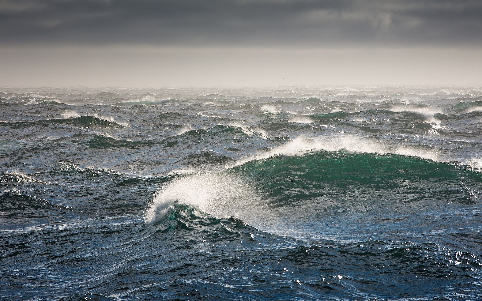 Cached Photographs of tsunami waves