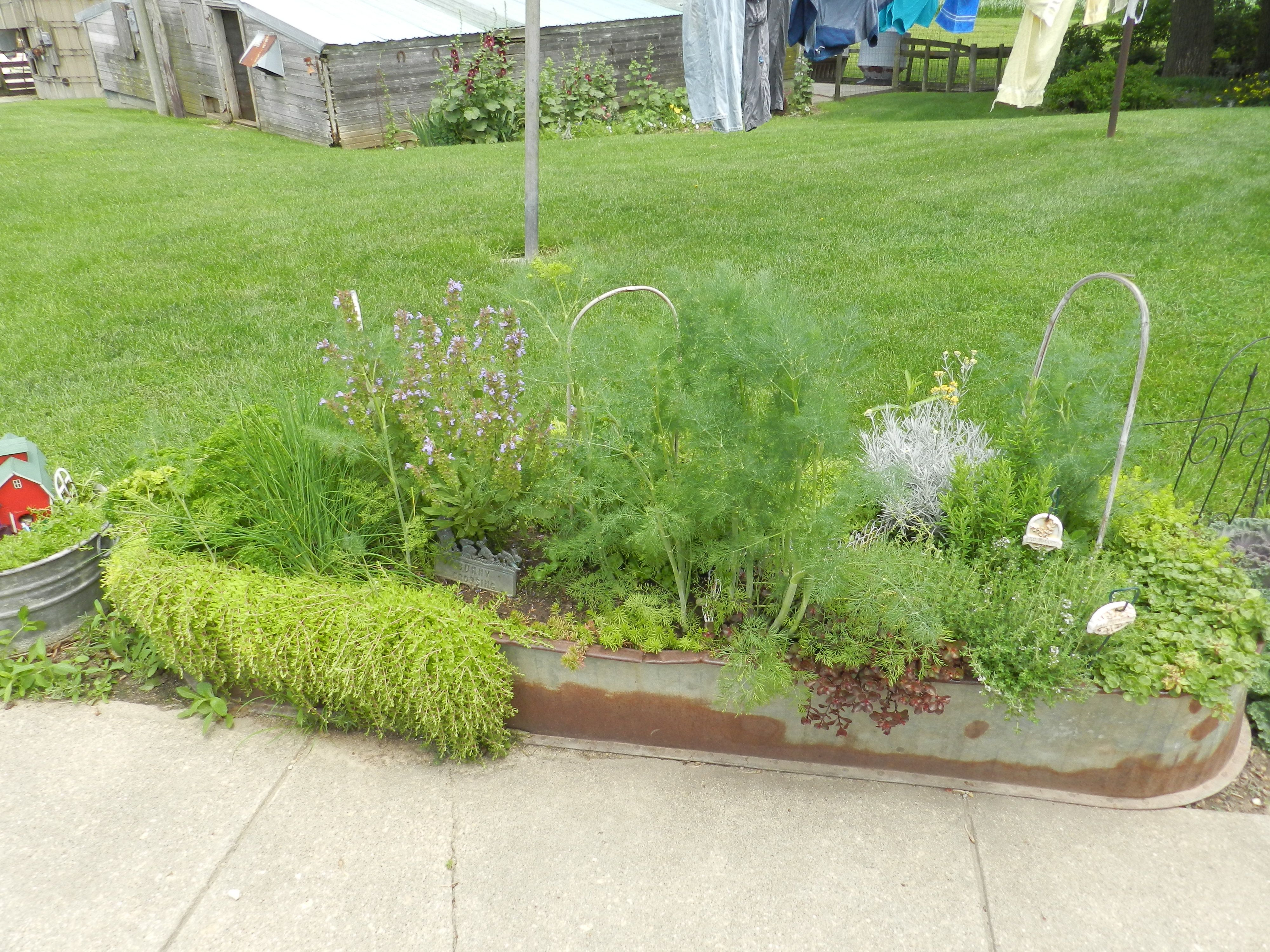 Container gardens herb bed garden ideas pinterest for Patio herb garden designs containers