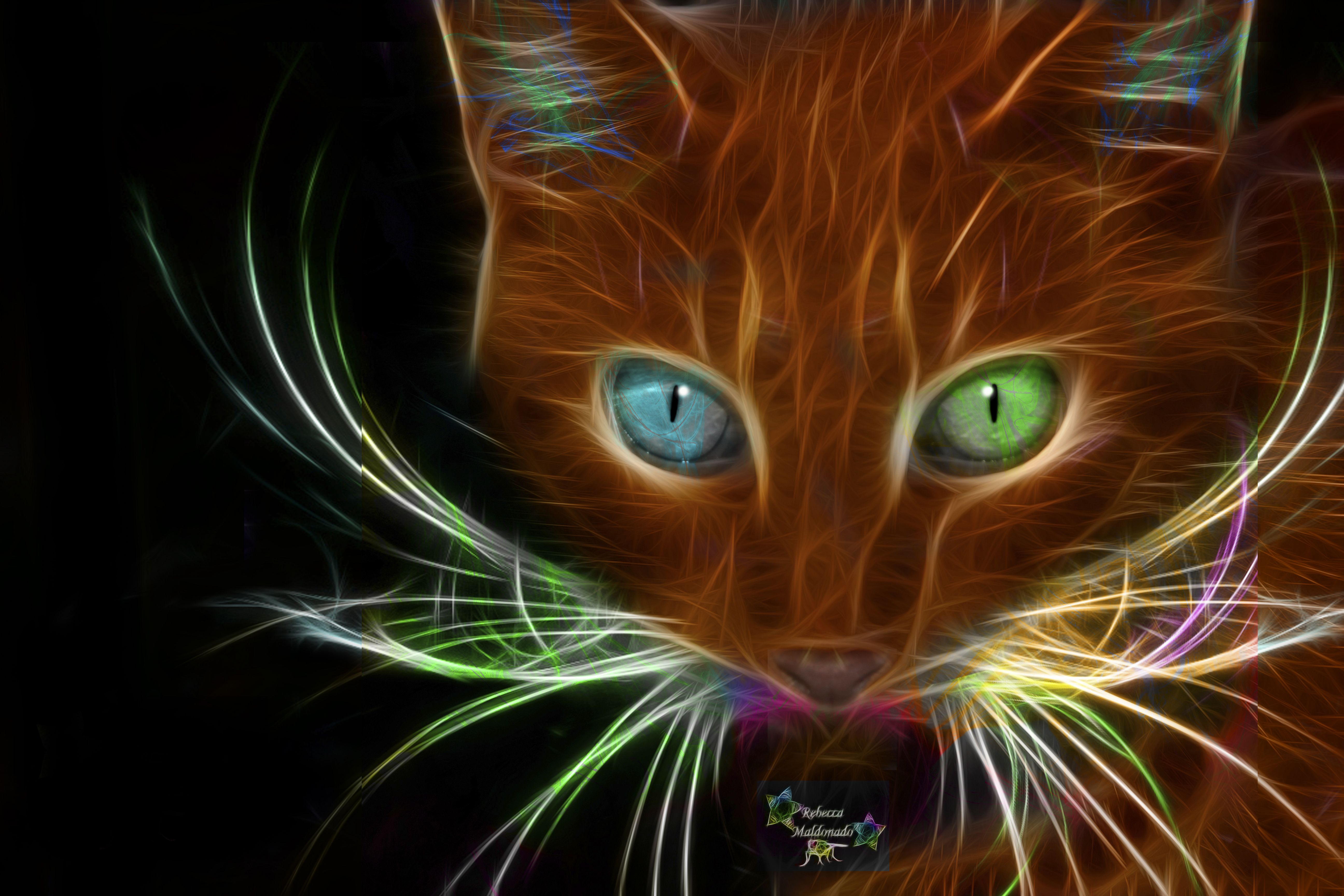 tiger fractal cats e - photo #38
