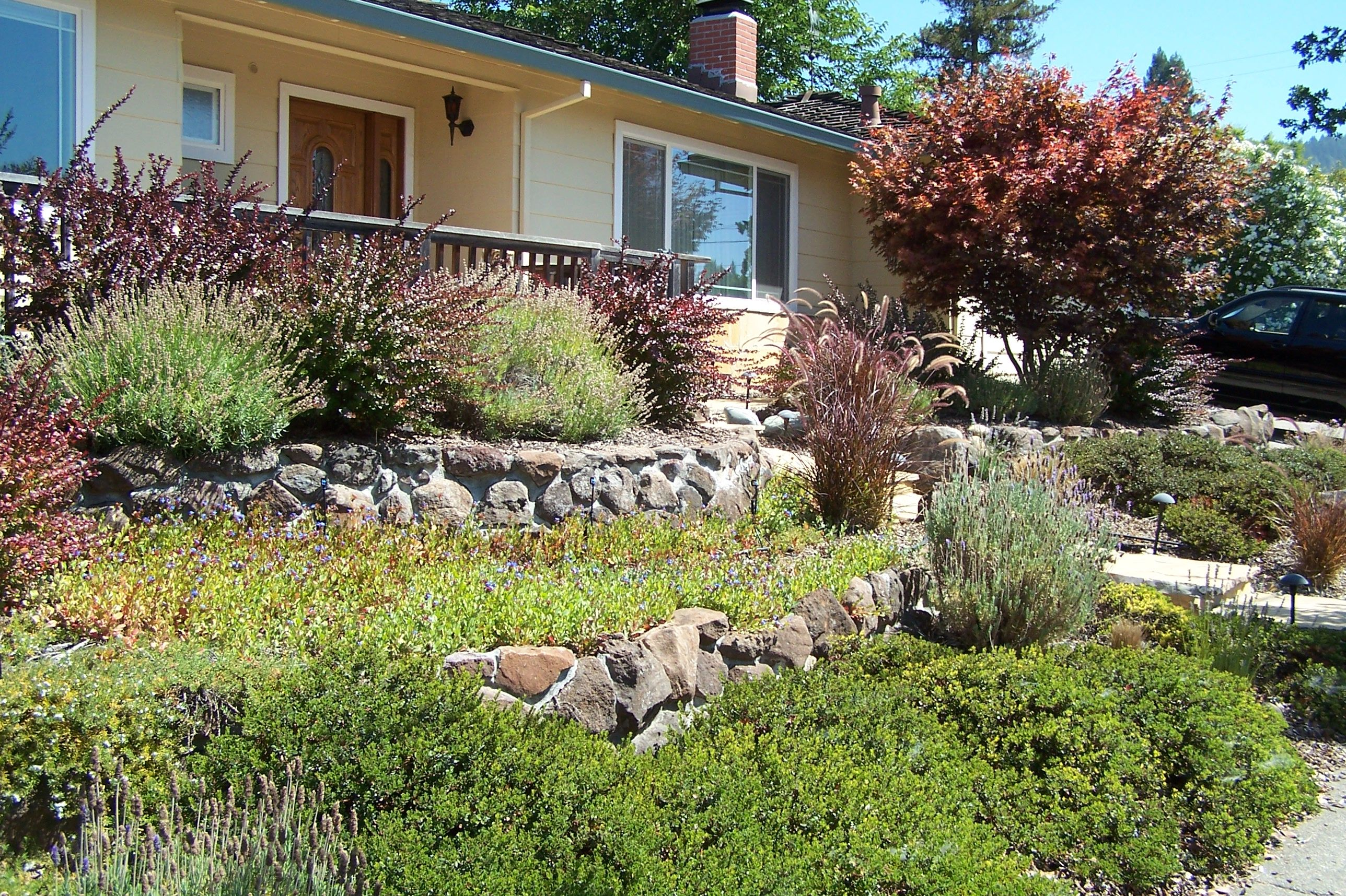 No lawn front yard garden inspiration pinterest for Front garden inspiration