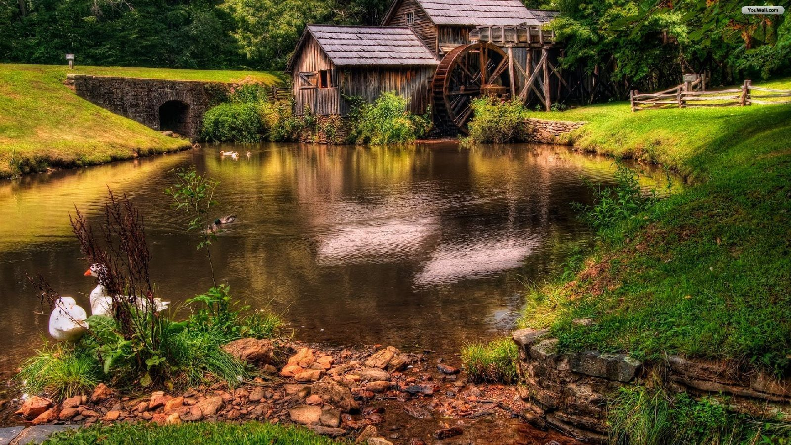 Duck pond water wheel for Duck pond water