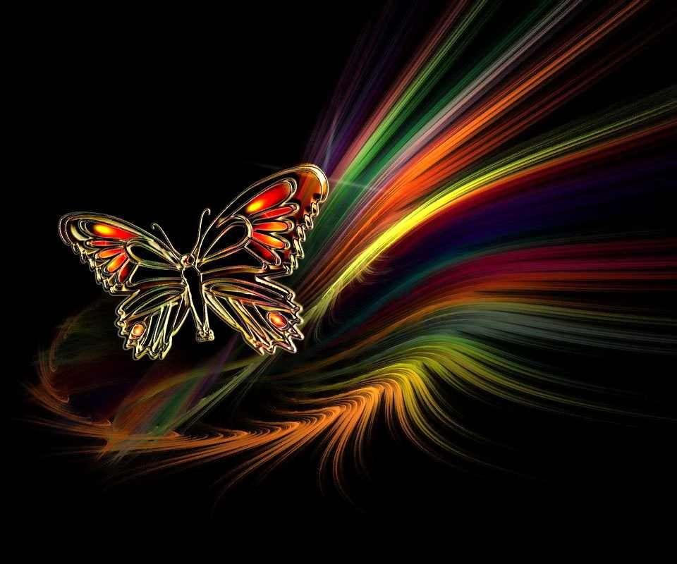 Neon Butterfly | Kewl ... Neon Butterfly Wallpaper