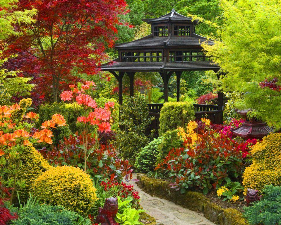 D co jardin japonais cerisier clermont ferrand 37 jardin du luxembourg clermont ferrand - Massif jardin japonais clermont ferrand ...