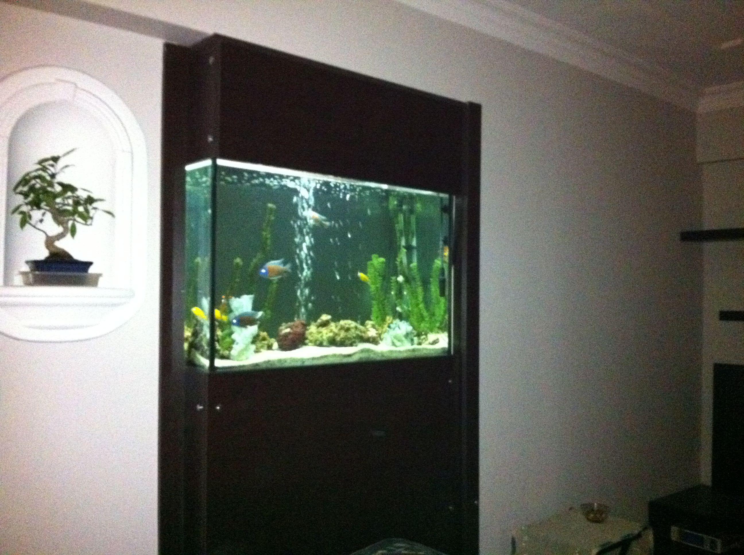 Indoor Aquarium All About The Home Pinterest