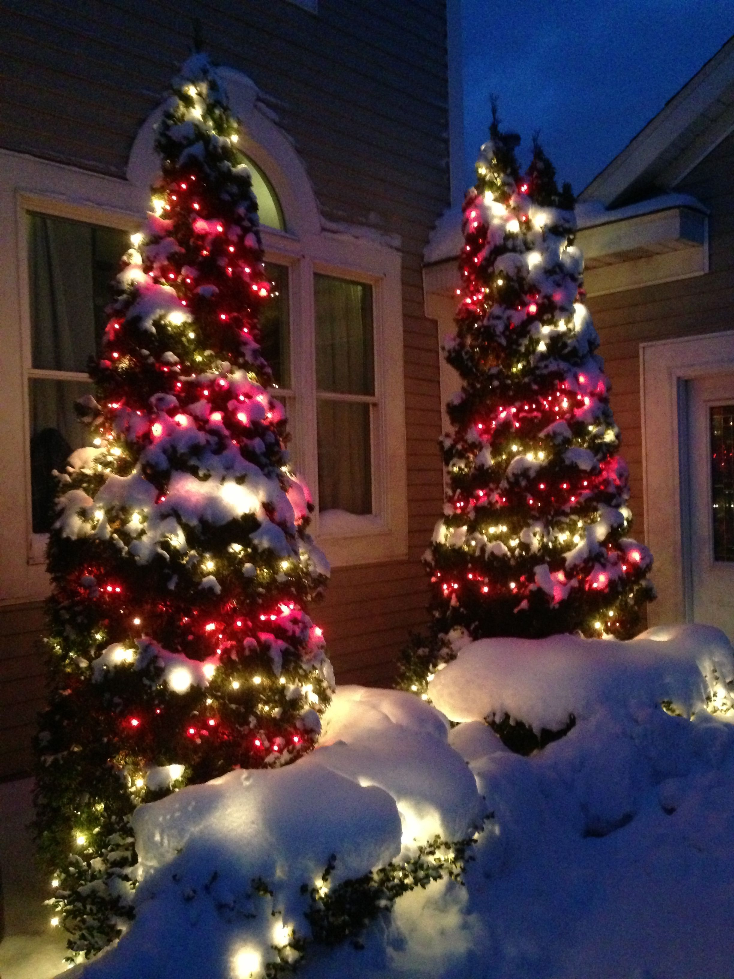 Outdoor christmas lights holiday decor pinterest for Pinterest home decor xmas