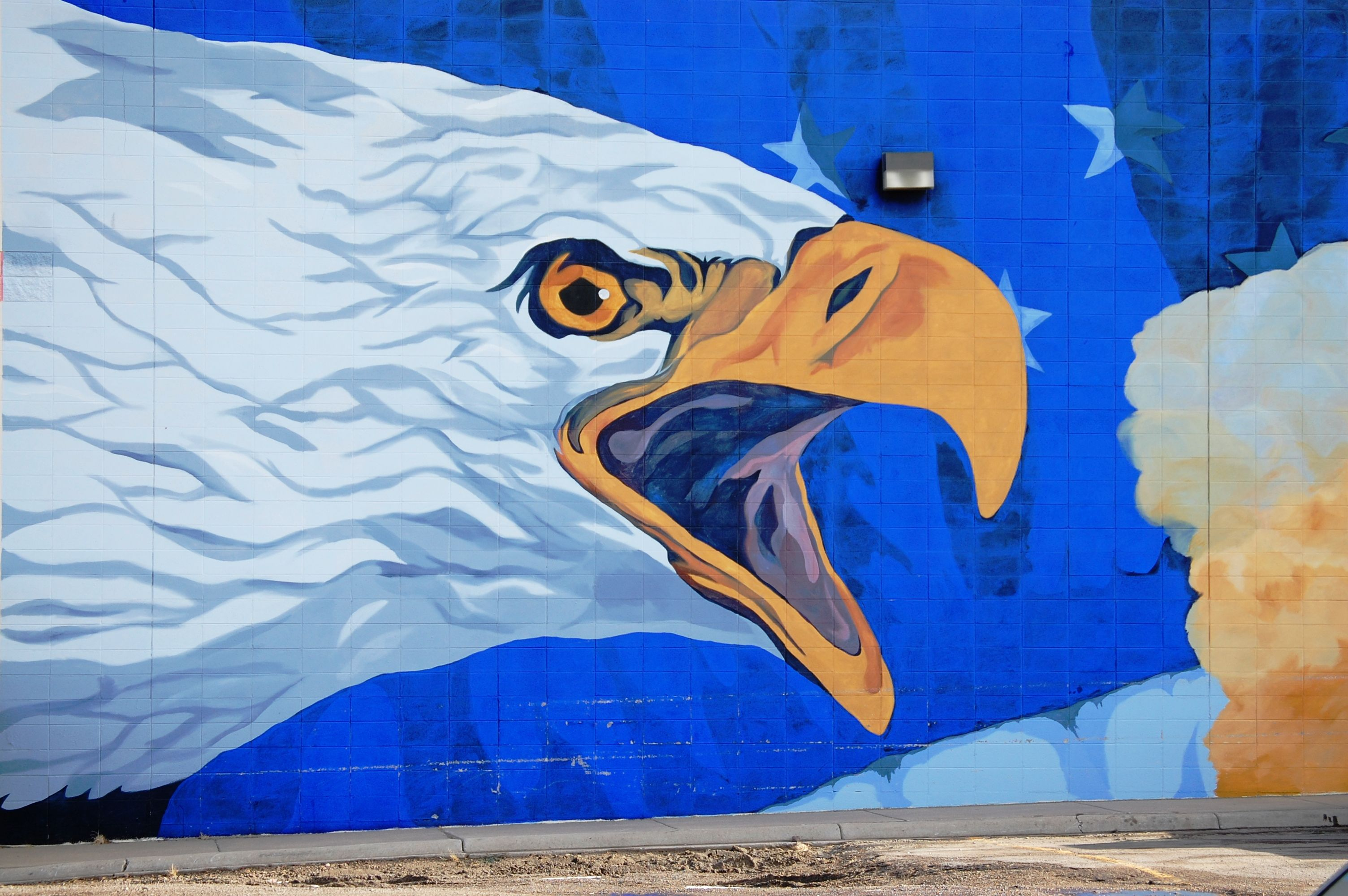 Huge eagle mural in cut bank montana murals graffiti for Eagle wall mural