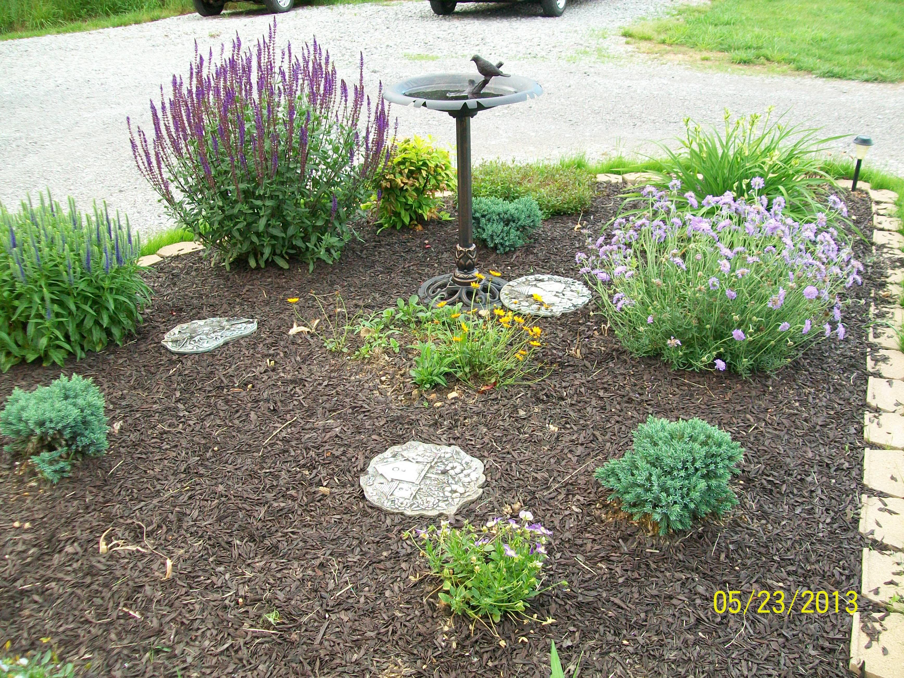 Perennial flower bed landscaping garden pinterest for Perennial flower bed design