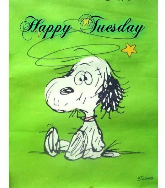 Good Morning Snoopy Wednesday : Snoopy happy tuesday quotes quotesgram