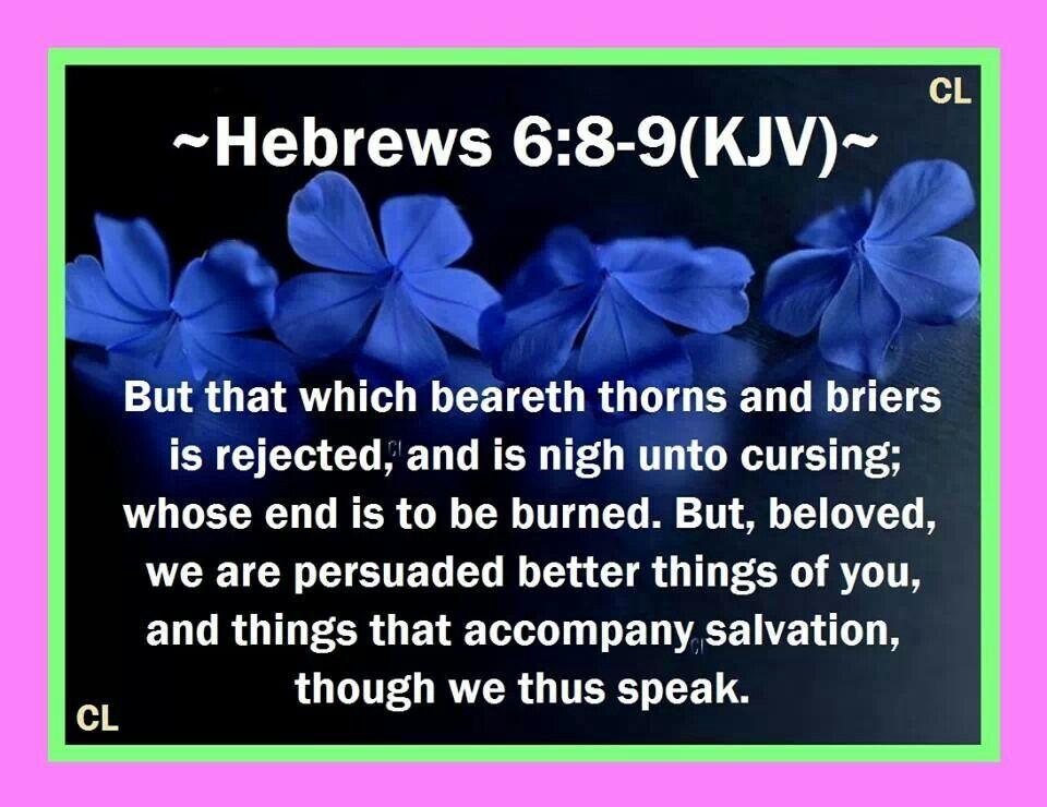 Hebrews 6:8-9 | Quotes/Bible Verses | Pinterest