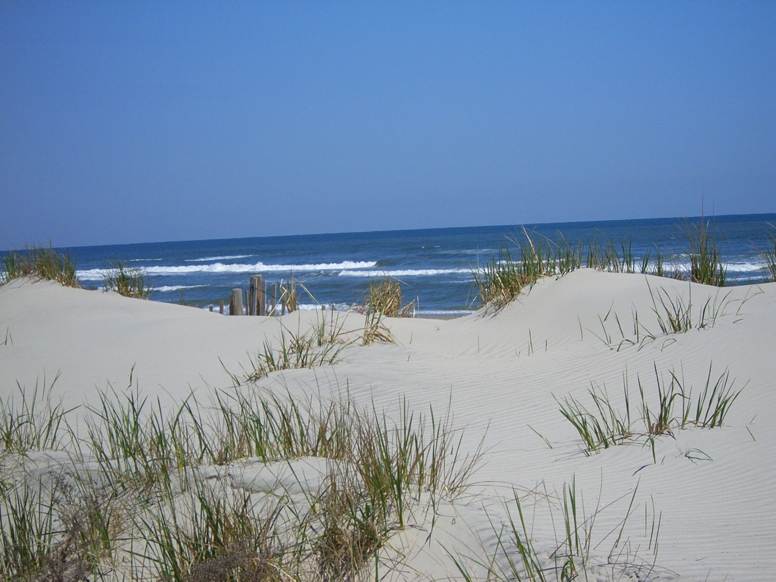 Stone Harbor, New Jersey | Jersey Shore Love | Pinterest