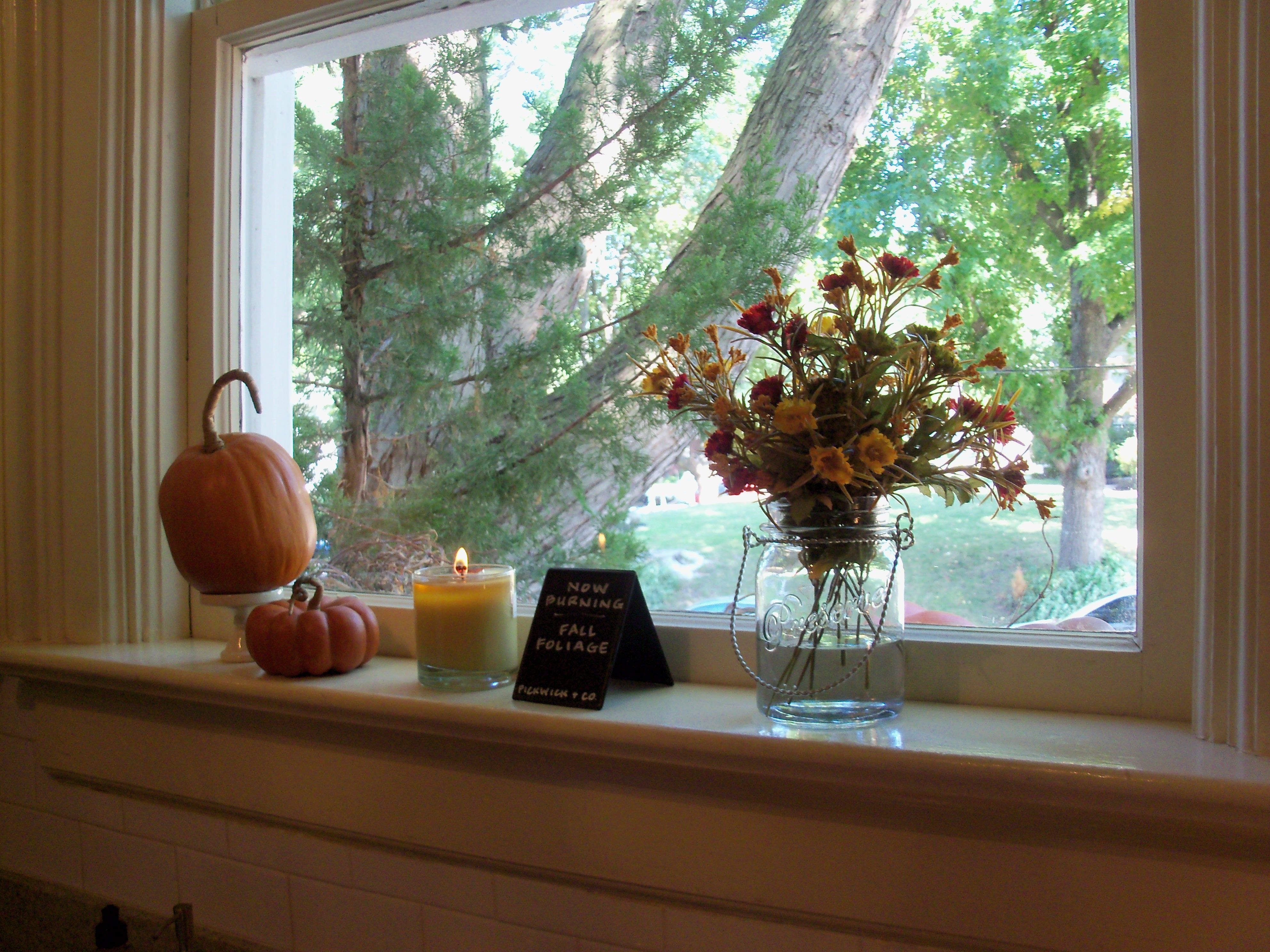 Fall window decor in the window pinterest for Autumn window decoration