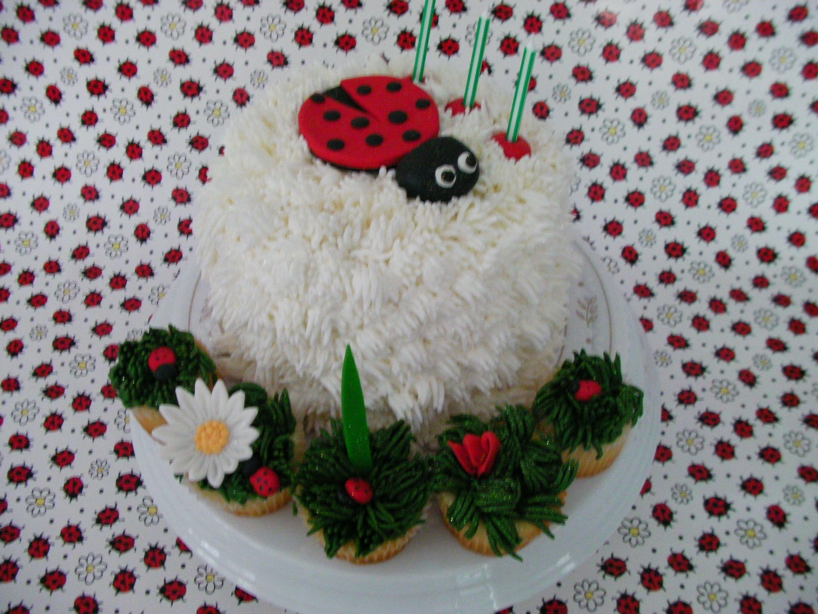 Pin Lady Bug Baby Shower Cake On Pinterest
