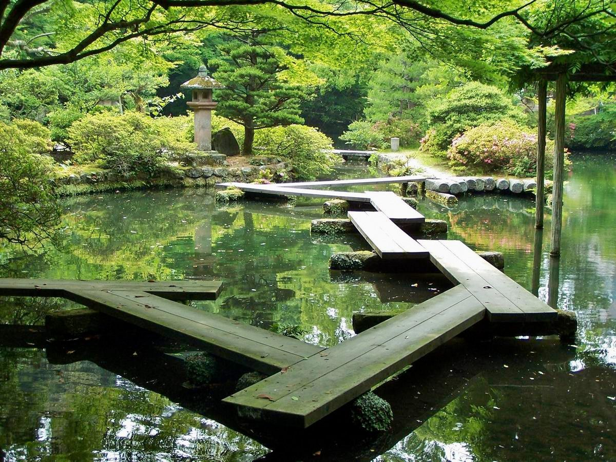 Japanese garden pond gardens pinterest for Garden pond videos