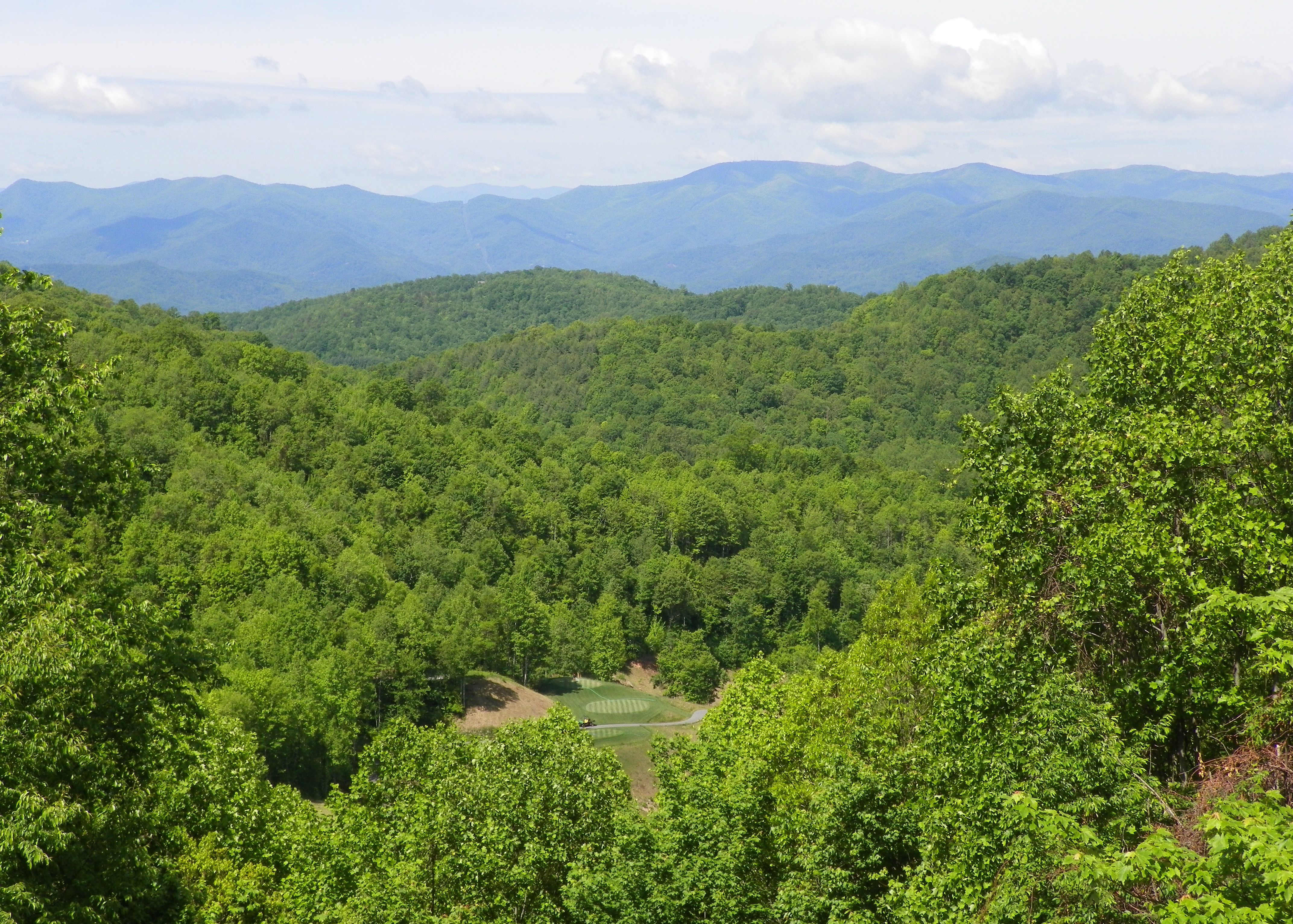 Pin By Barbara Matzick Huse On Balsam Mountain Preserve