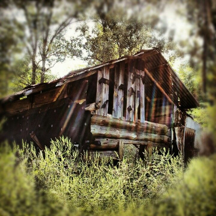 Abandoned cabin in the woods east texas cemeteries for Texas cabins in the woods
