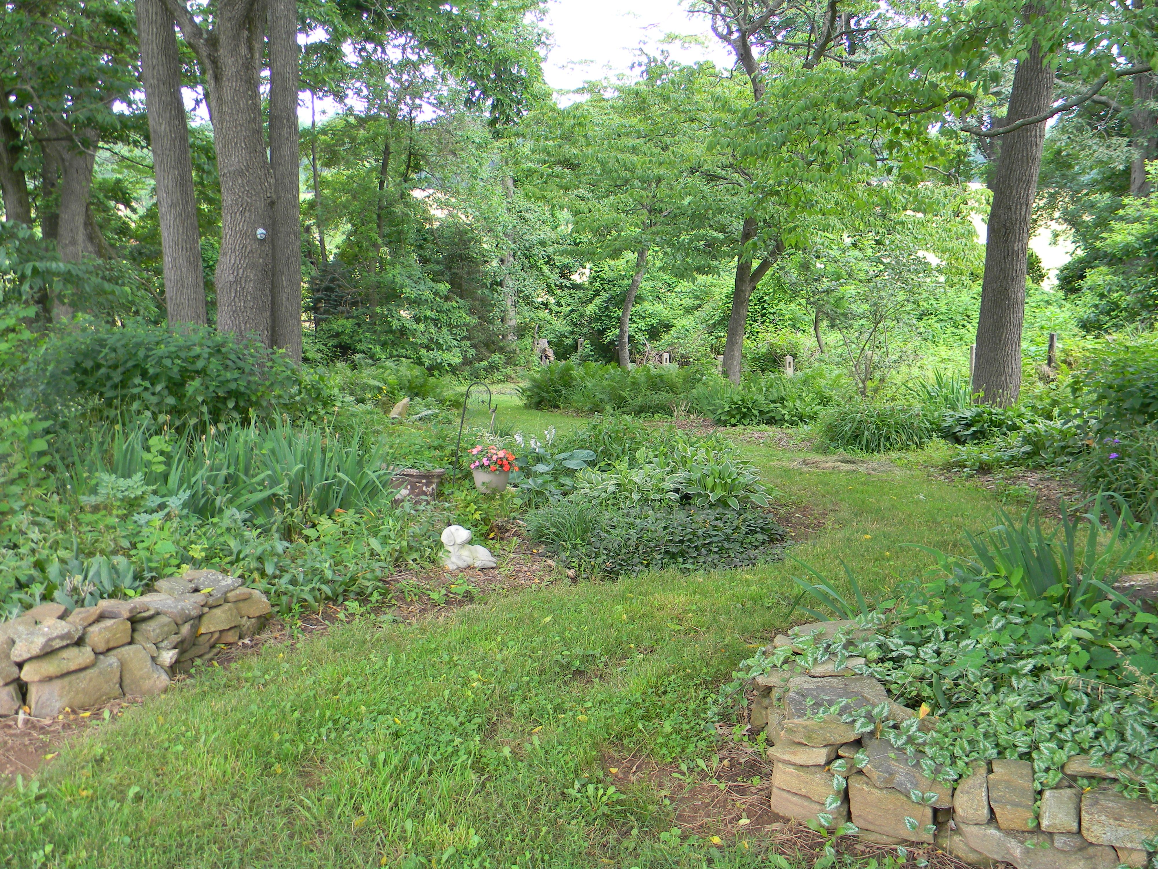 Woodland garden path dream property pinterest for Garden path