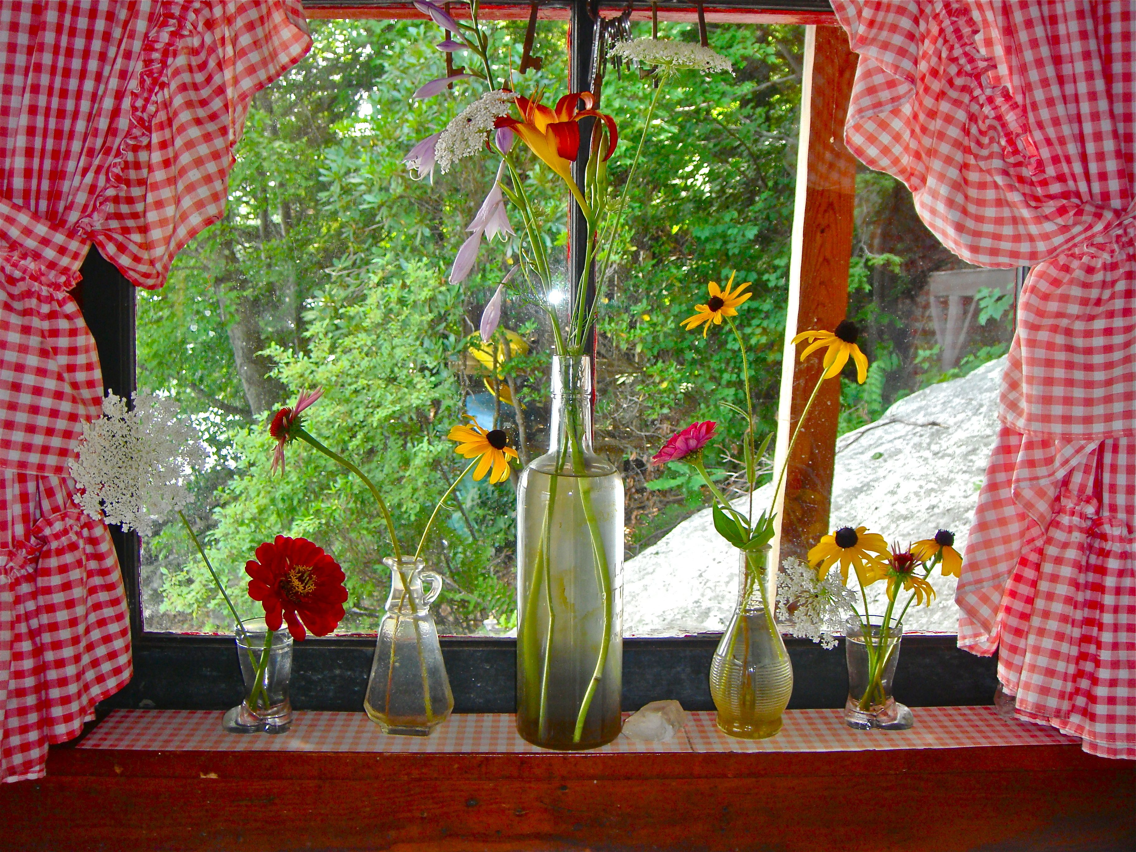 Red gingham curtains for a cabin windows curtains amp a few daisies