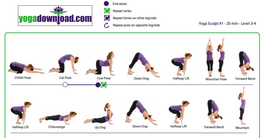 Упражнения для йоги для начинающих в домашних условиях для похудения