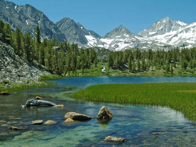 Mammoth mountain california california my home town for Sierra fish in english