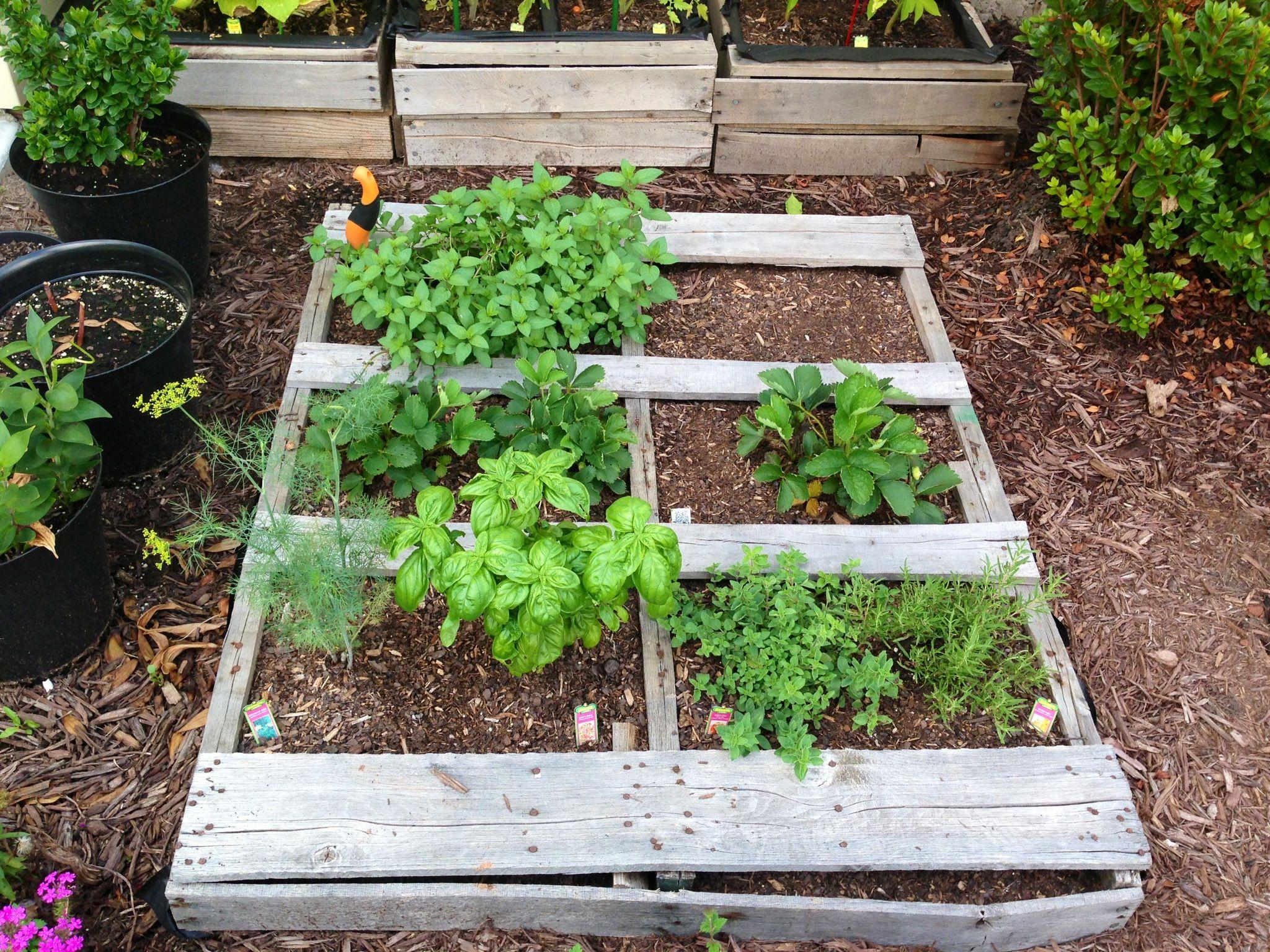 my pallet herb garden palets pinterest. Black Bedroom Furniture Sets. Home Design Ideas