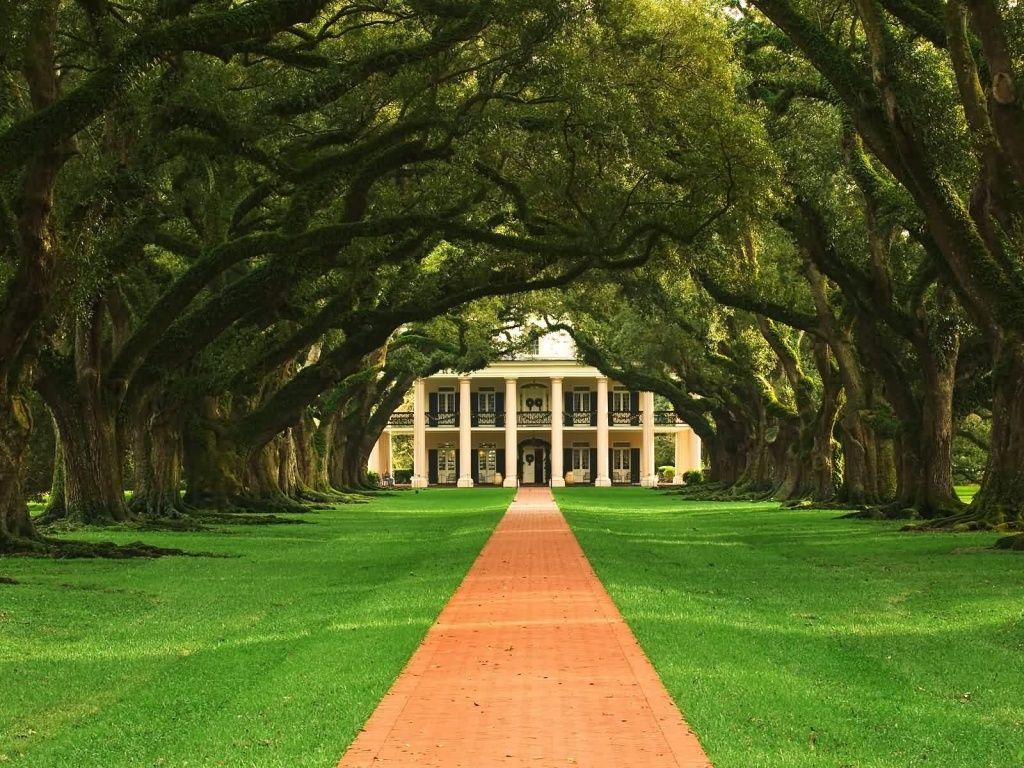 Oak alley plantation favorite places spaces pinterest for Southern plantation house