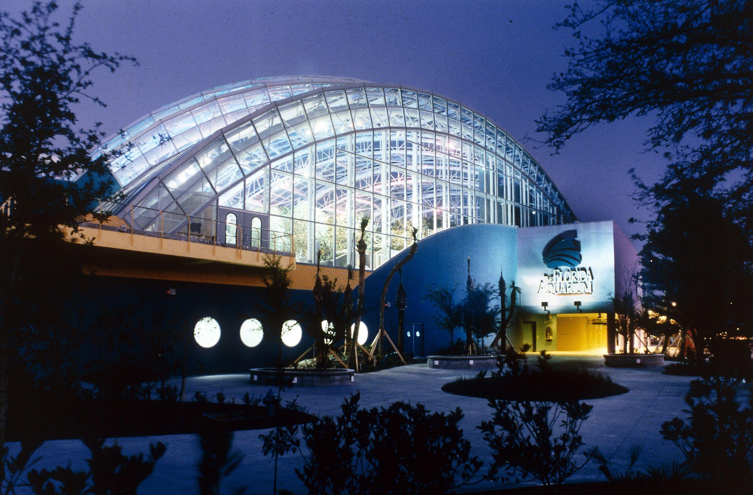 Tampa Aquarium Places We 39 Ve Visited Pinterest