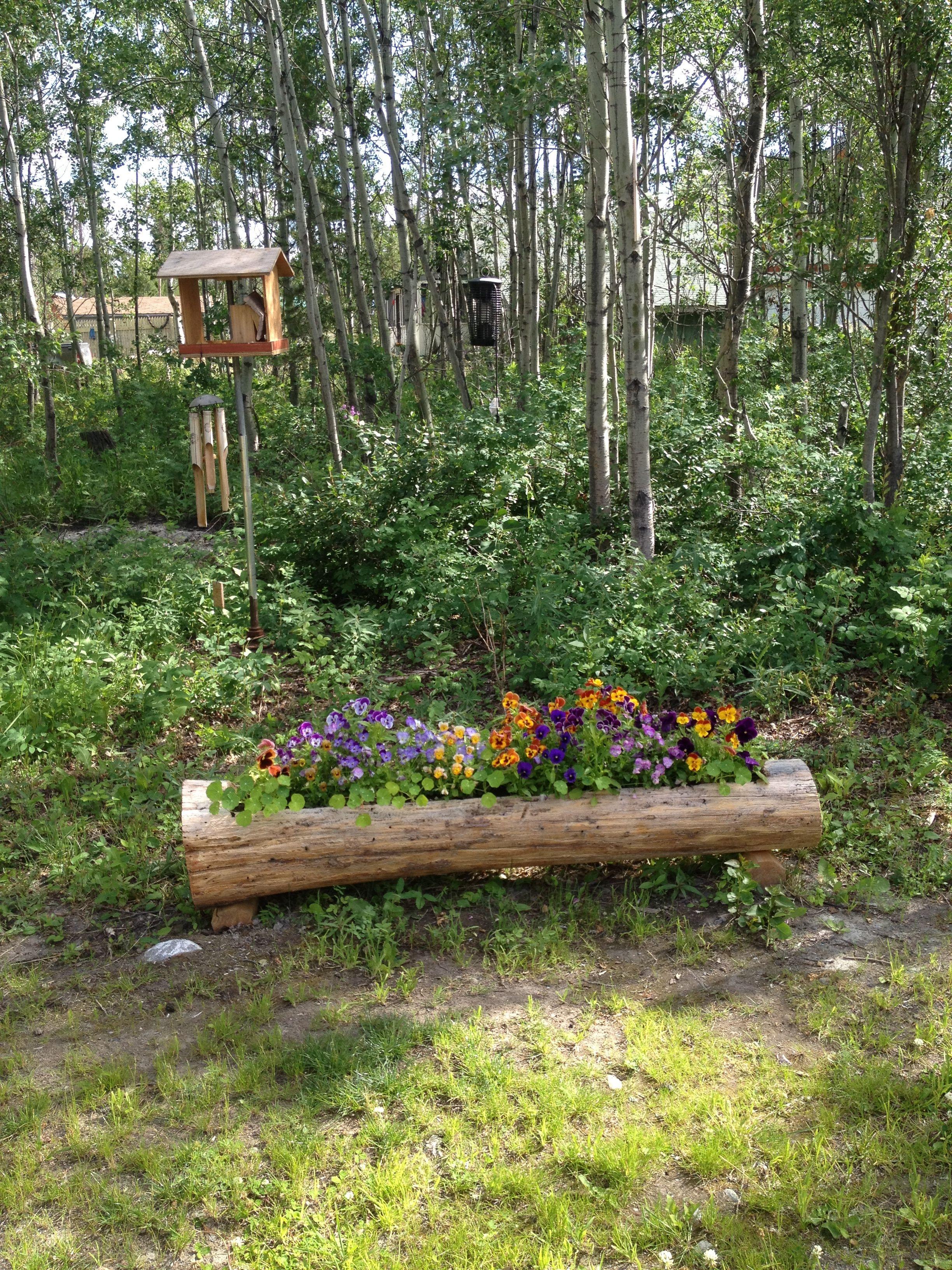 Beautiful garden log log flower bed outdoor ideas for Outdoor flower bed ideas