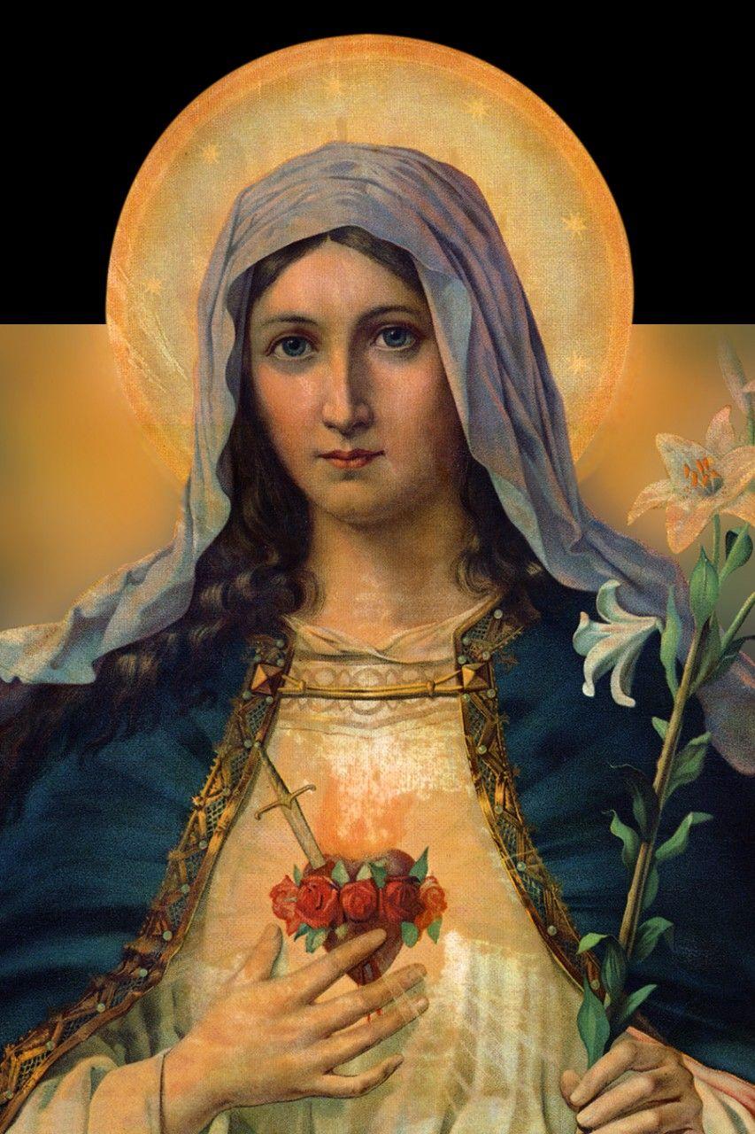 Immaculate Heart of Ma...