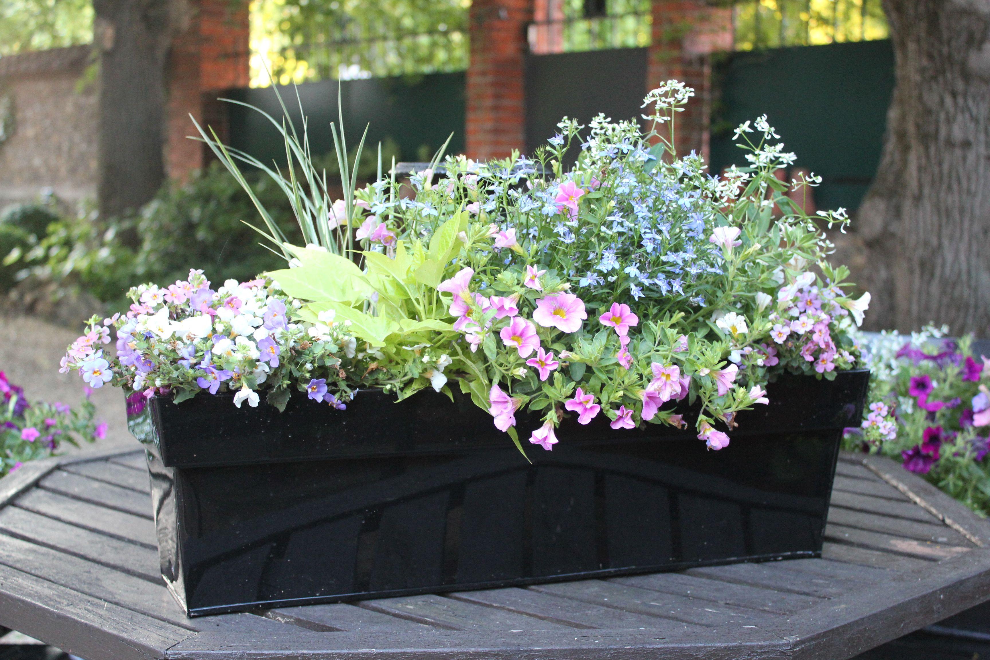 Idee De Jardiniere Une Ide De Jardinire Dans Un Mur En Pierres