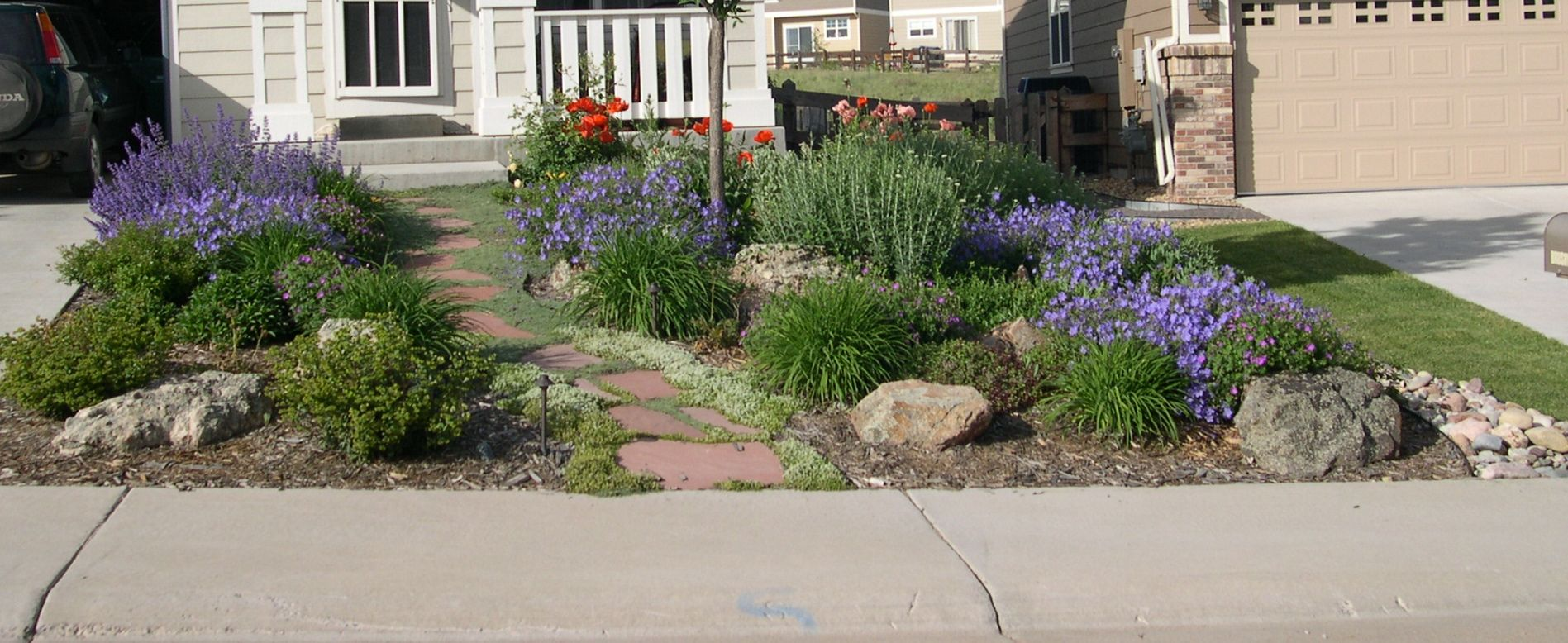 colorful xeriscaping of the front yard gardening. Black Bedroom Furniture Sets. Home Design Ideas