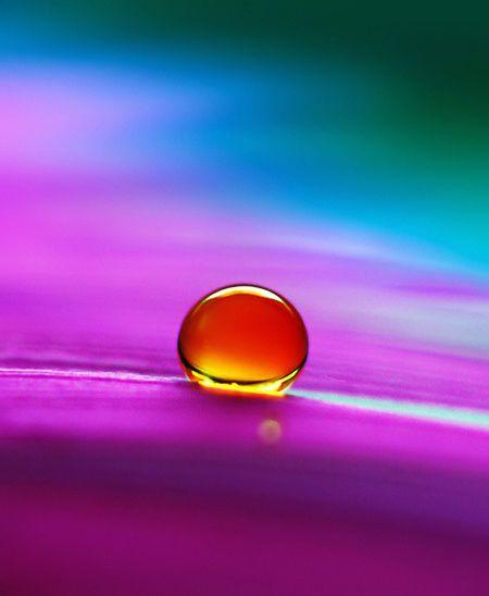 Purple complementary colors burgundy purple bordeaux - What color complements purple ...
