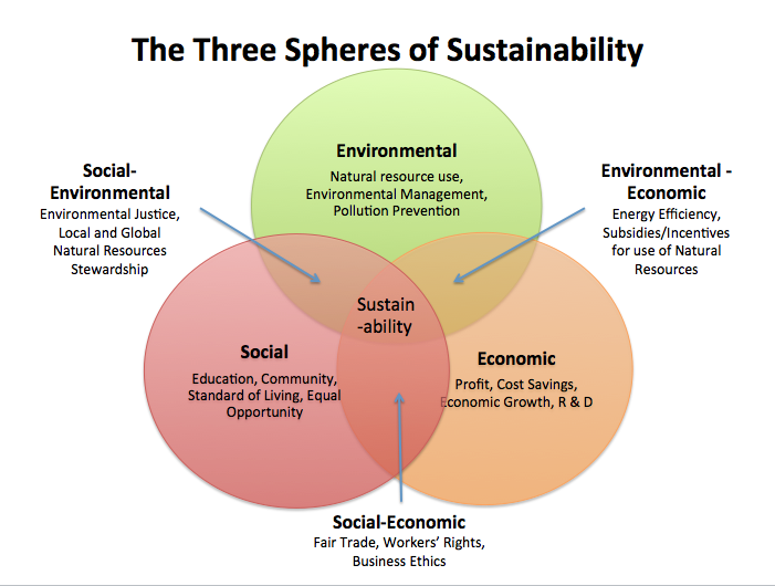 environment sustainability in business